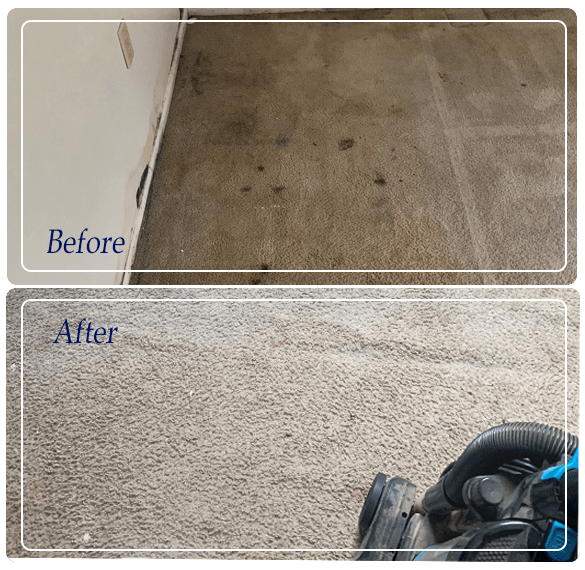 Carpet Cleaning Footscray